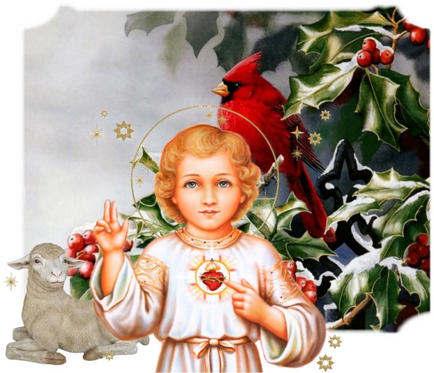 Francois Illas New Tradition: ADVENT