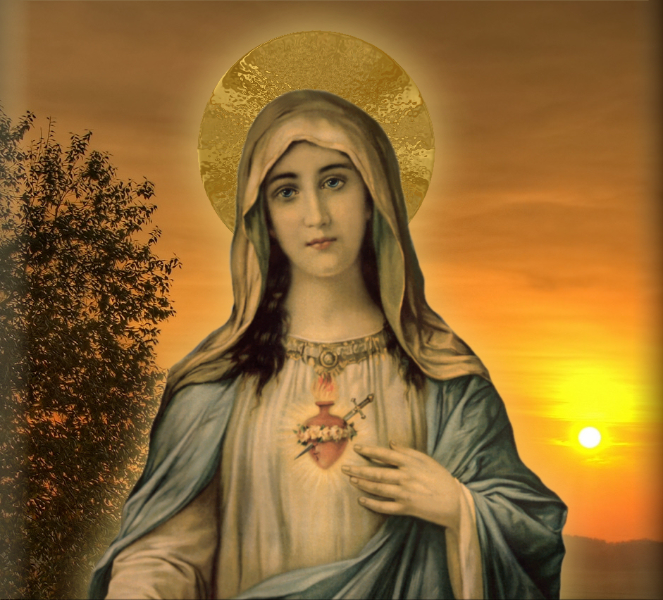 Holy Mary Wallpaper Immaculate Heart of Mary