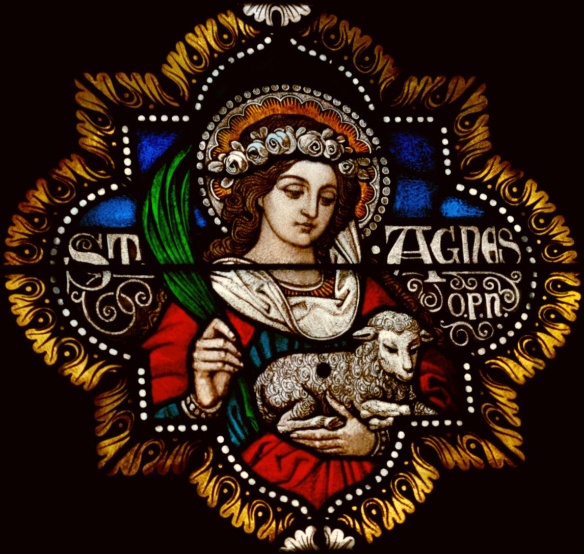 Saint Agnes Of Montepulciano On Pinterest