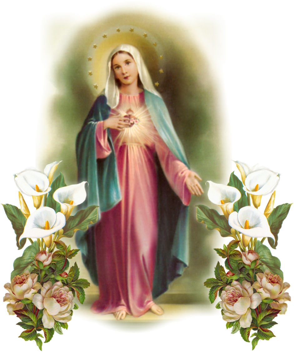 THE IMMACULATE EART OF MARY
