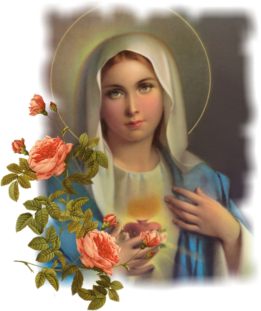 Blessed Mother Mary And Jesus DEVOTION TO PRE...
