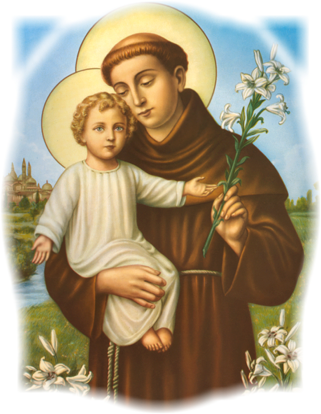 Catholic Tradition St Anthony Of Padua