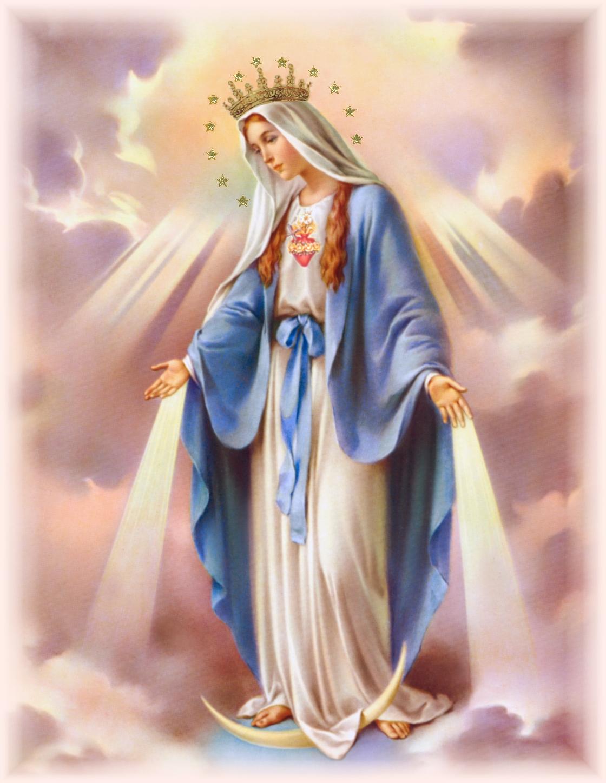 SACRED HEART OF JESUS - EWTN Global Catholic Television